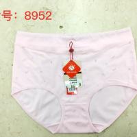 8952众志女弹力棉三角