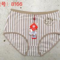 8166众志彩棉