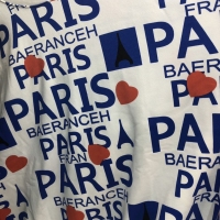 ANJ满印Paris