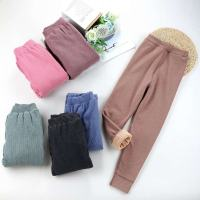 七彩海螺竖条保暖裤